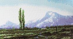 Схема для вышивания нитью мулине 0287