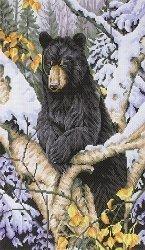 Схема для вышивания нитью мулине 0352