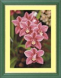 """Набор для вышивания бисером СВБ-8025 """"Орхидеи"""""""