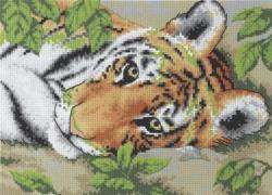 """Набор для вышивания Ф21 """"Тигрик"""""""