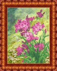 Канва для бисера КБЦ-3039 Луговые цветы
