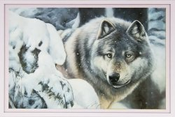 Алмазная картина-раскраска 40PDB